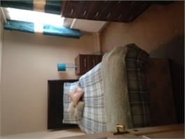 Single Room to rent
