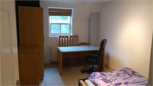 Room in top floor flat facing Sefton Park, Liverpool