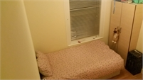Cosy Single room in female house - Wood Green