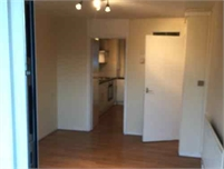 Lovely One Bed Flat - London